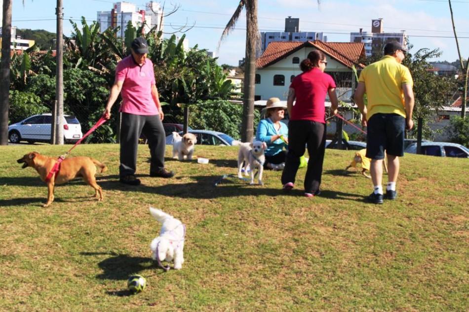 Cão no Parque e Fenahabit são os destaques para o fim de semana