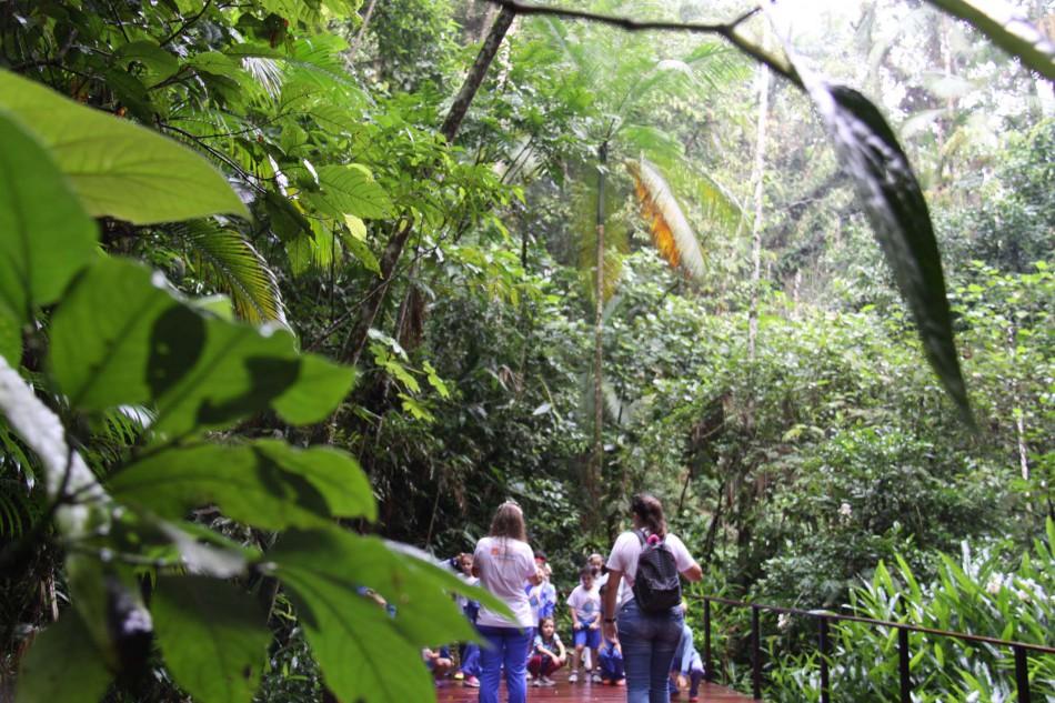 Parque São Francisco de Assis reabre nesta terça-feira