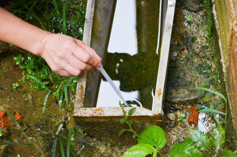 Em um mês, mais de 150 focos de Aedes são encontrados em Blumenau