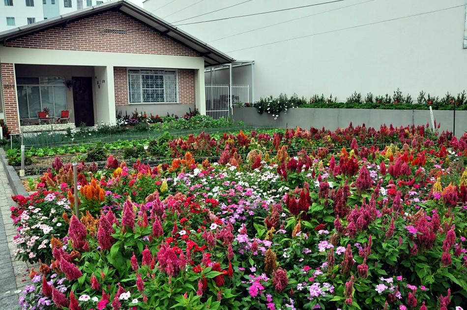 Segunda edição do Concurso de Jardins reúne quatro concorrentes