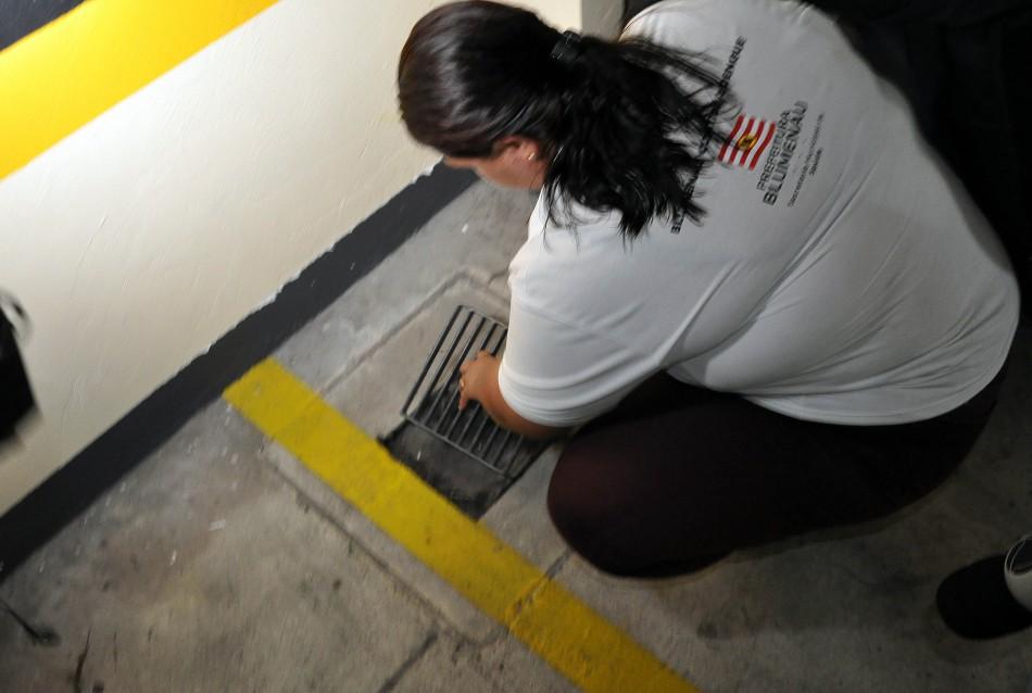 Aumento de quase 600% de focos do mosquito Aedes alerta Blumenau