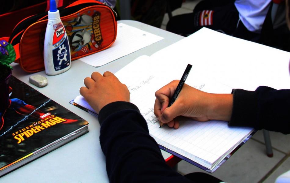 Mais de 33 mil pessoas responderam a avaliação institucional participativa da Rede Pública Municipal de Ensino de Blumenau
